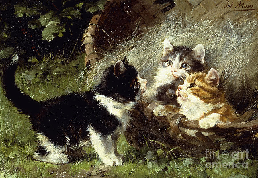 Cat Painting - Any Room In The Basket by Julius Adam