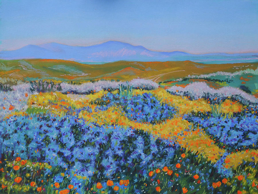 Anza borrego spring painting by dan scannell anza borrego painting anza borrego spring by dan scannell mightylinksfo