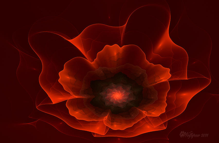 Abstract Photograph - Apo Oriental Poppy by Peggi Wolfe
