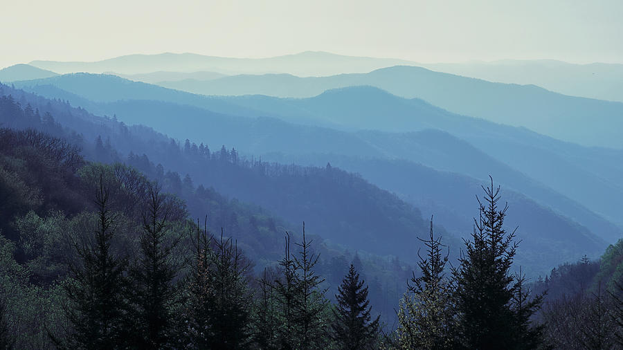 Appalachian Blue by Nicholas Blackwell