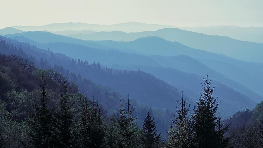Appalachian Blue by Nicholas Blackwell