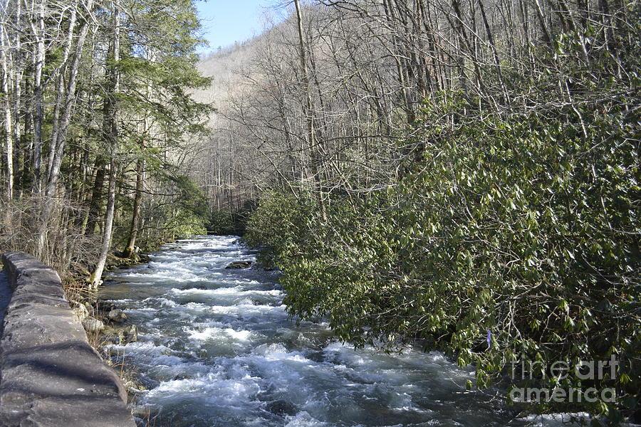 Appalachian Mountain Water 2 by Barb Dalton