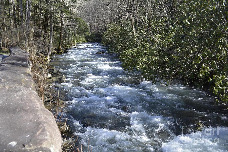 Appalachian Mountain Water by Barb Dalton