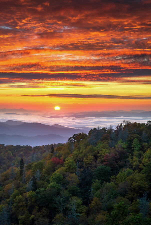 Appalachian Mountains Asheville North Carolina Blue Ridge Parkway NC Scenic Landscape by Dave Allen