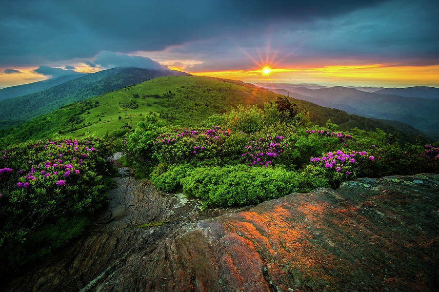 Spring Photograph - Appalachian Trail NC TN Roan Mountain Evening Glow by Robert Stephens