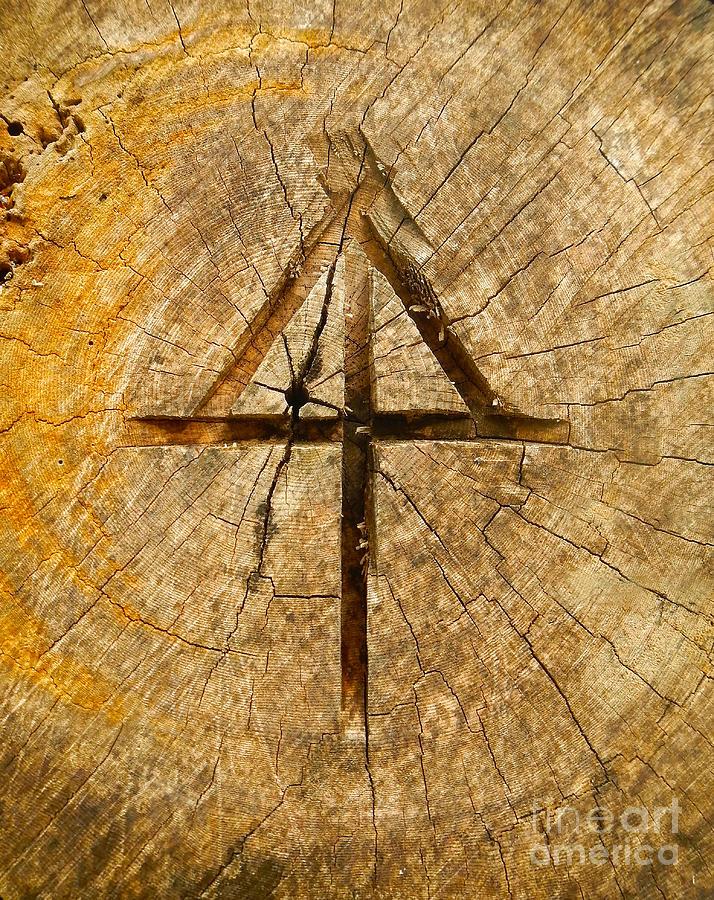 Appalachian Trail Symbol In A Log by Glenn Gordon