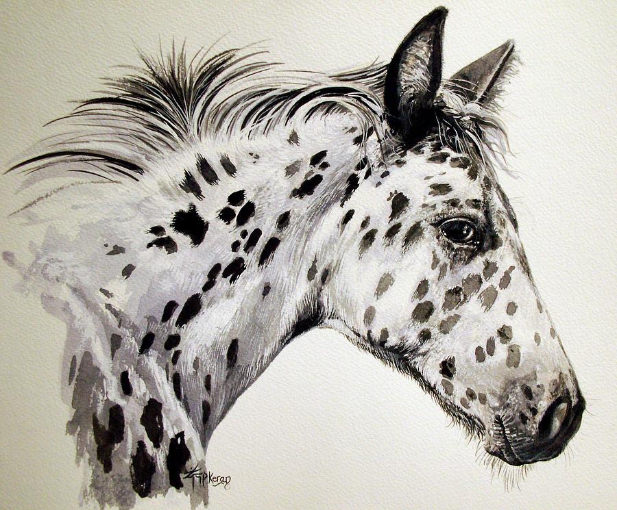 Appaloosa Horse Painting - Appaloosa by Keran Sunaski Gilmore