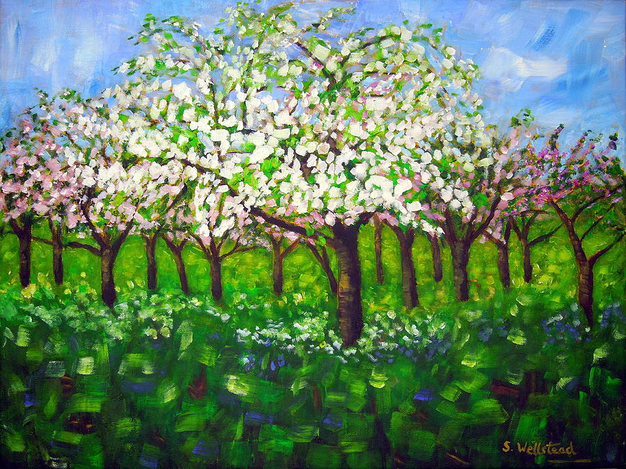Apple Blossom Orchard by Shirley Wellstead