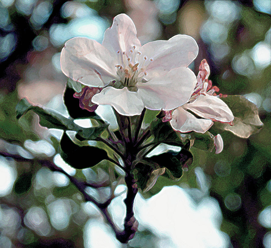 Flowers Painting - Apple Blossom Time by RC deWinter