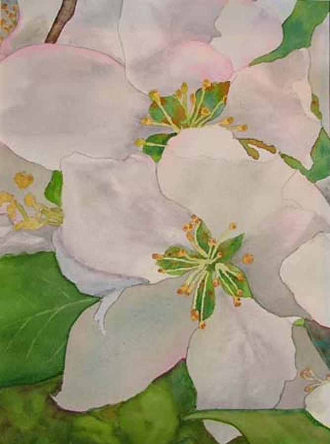Apple Blossoms Painting - Apple Blossoms by Sharon E Allen