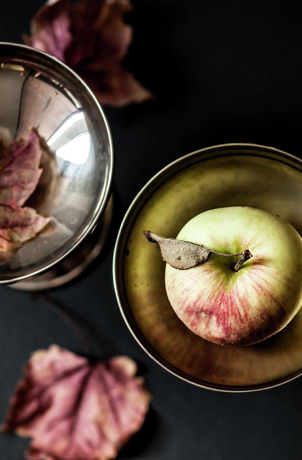 Apple Elevated by Maggie Terlecki