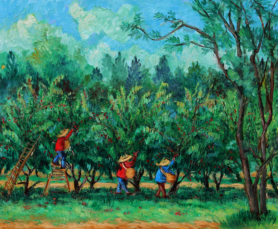 Orchard Painting - Apple Pickers  Littletree Orchard  Ithaca Ny by Ethel Vrana