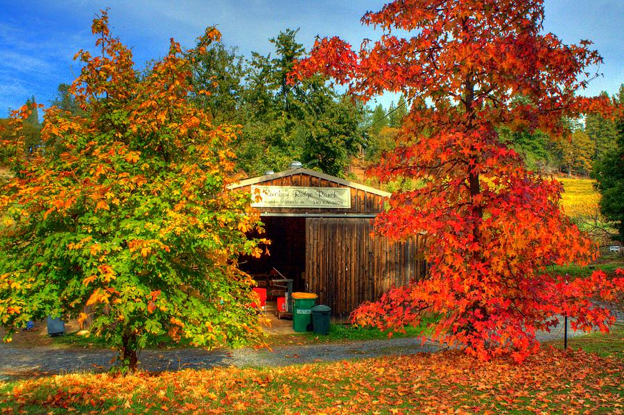 Apple Hill Photograph - Apple Shed by Randy Wehner Photography