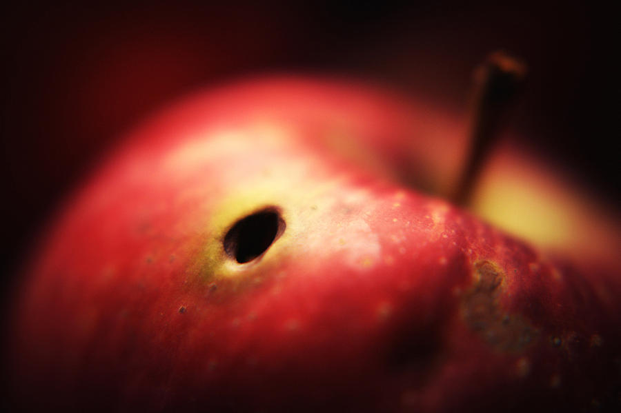 Apple Photograph - Apple by Svetlana Peric