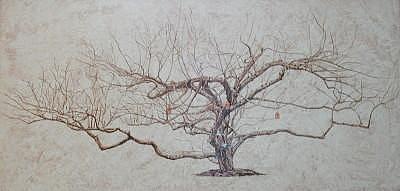 Apple Tree Painting - Apple Tree In Winter by Leah  Tomaino