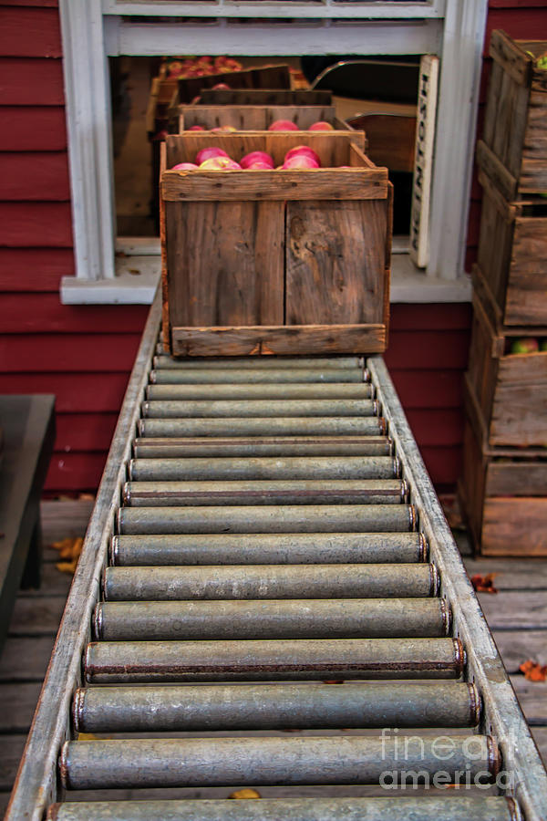 Apple Unloading Time Photograph