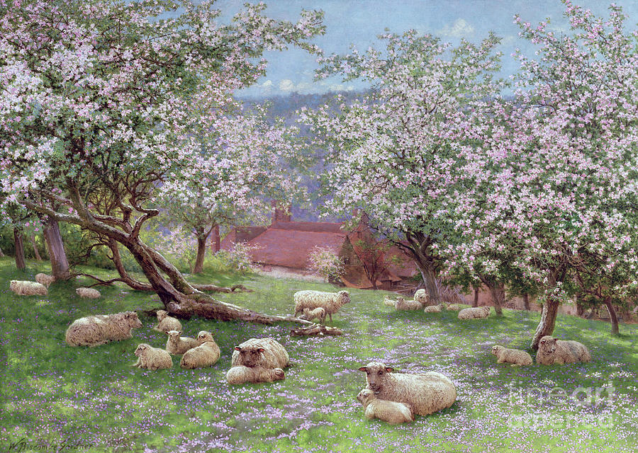 Water Painting - Appleblossom by William Biscombe Gardner