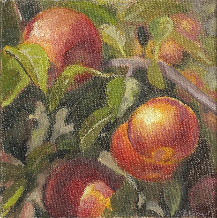 Apples Painting - Apples In The Orchard by Christopher James