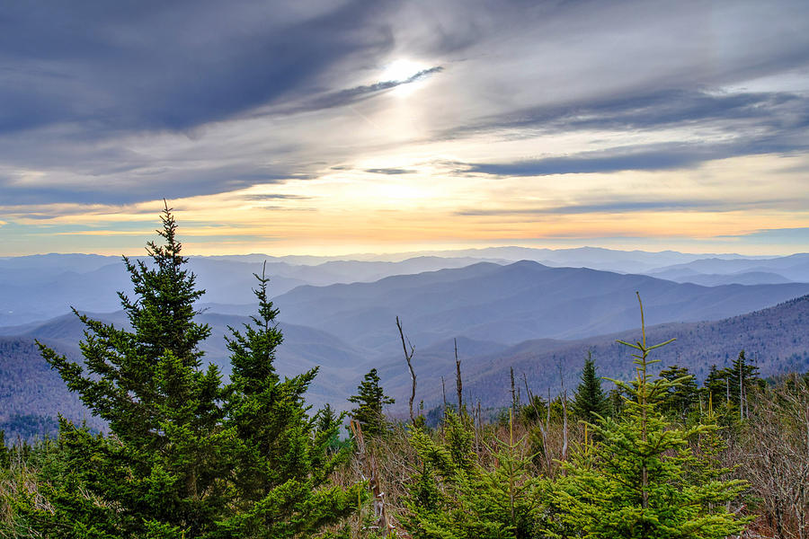 Fall Photograph - Apricot Afternoon at Clingmans Dome by Kristina Plaas