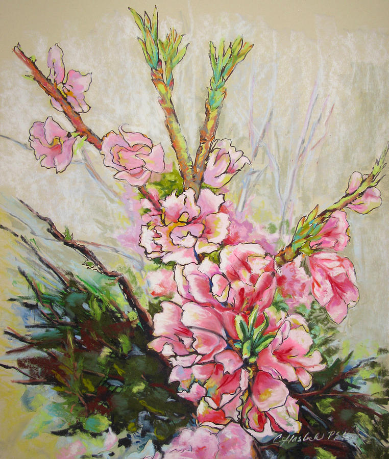 Floral Pastel - Apricot Energy by Carole Haslock