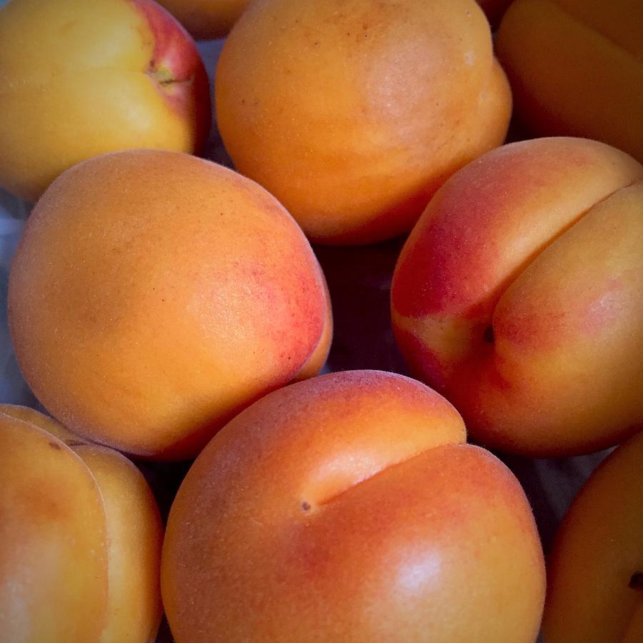 Apricots by Cristina Stefan