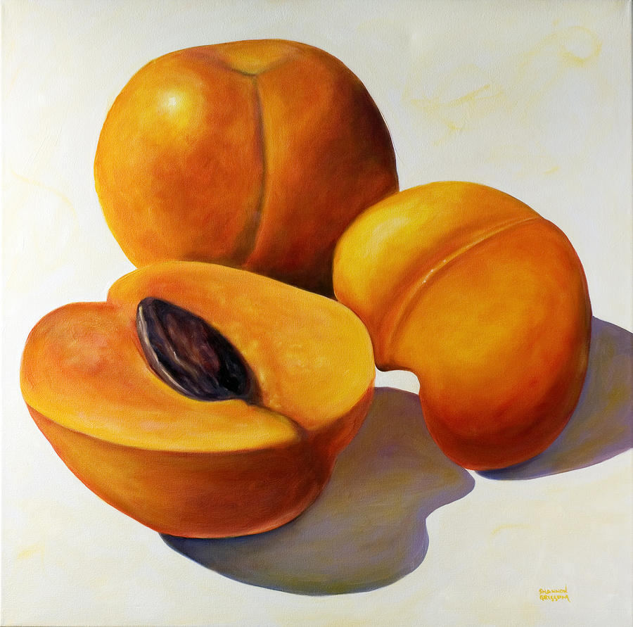 Apricots Painting - Apricots by Shannon Grissom