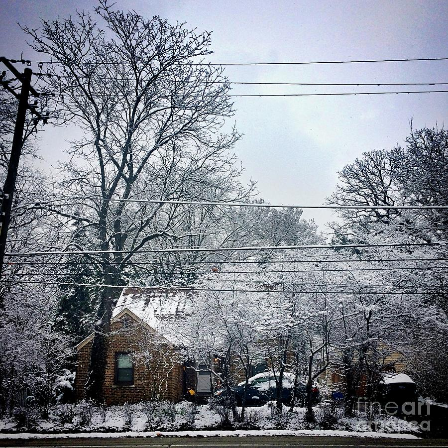 April Snow Photograph