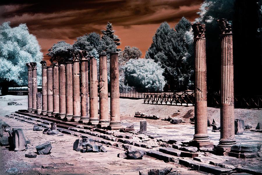Aquileia, Roman Forum by Helga Novelli