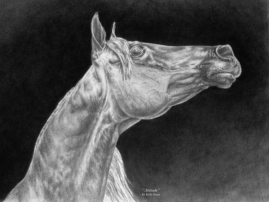 Arabian Drawing - Arabian Horse Attitude Print by Kelli Swan