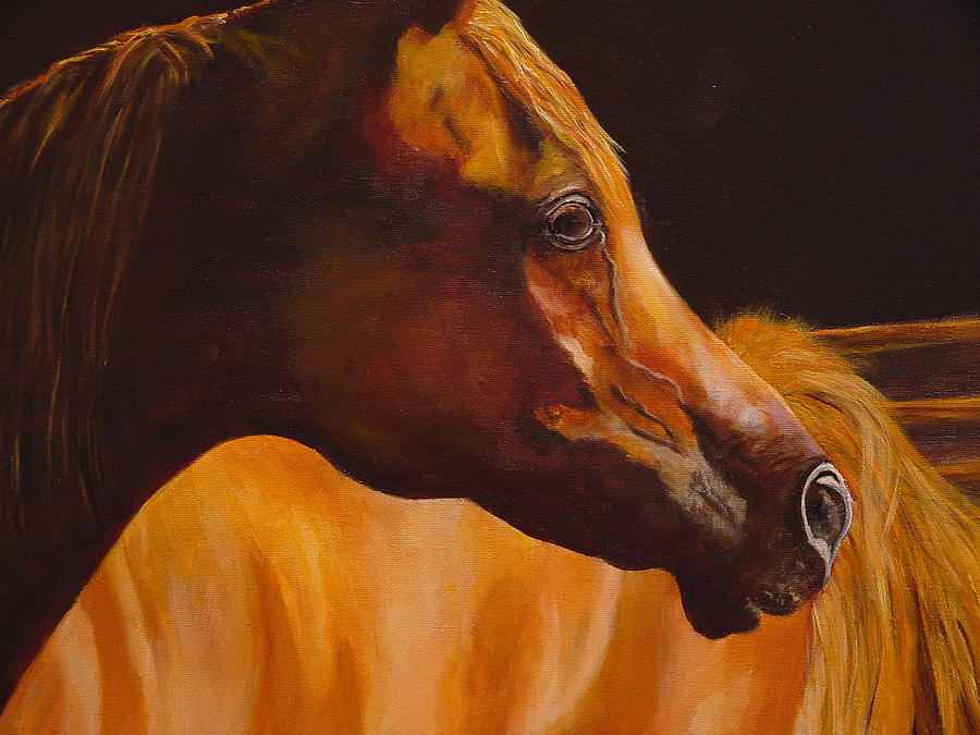 Arabian Horse Painting - Arabian Horse Oil Painting by Mary Jo Zorad
