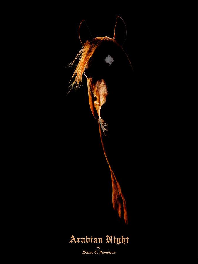 Arabian Night Photograph - Arabian Night by Diane C Nicholson