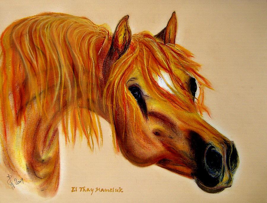 Horse Painting - Arabian Stallion El Thay Mameluk by ELA-EquusArt