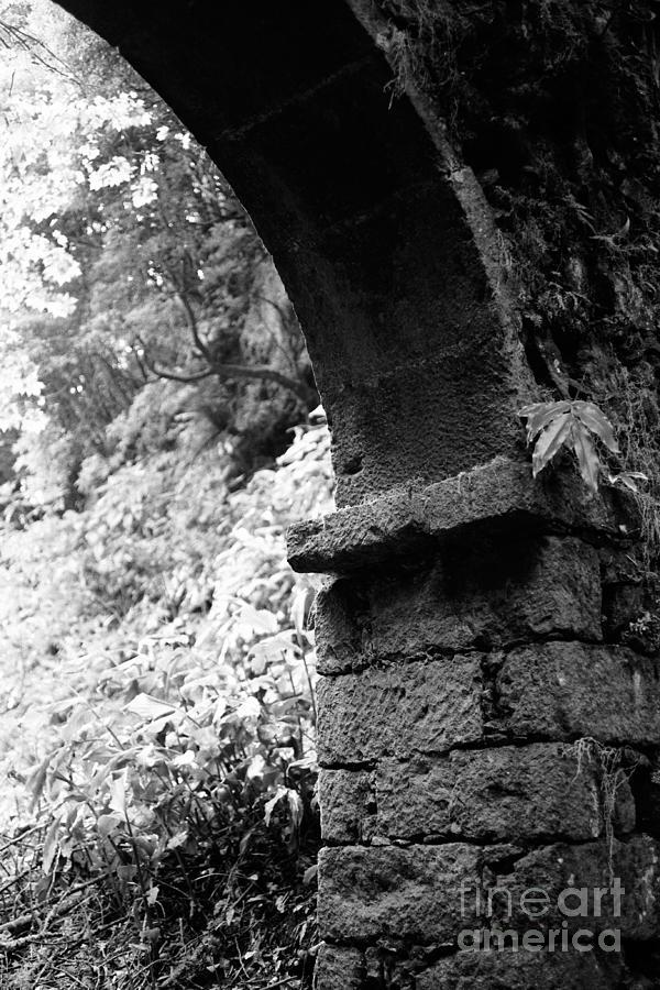 Arc Photograph - Arc by Gaspar Avila
