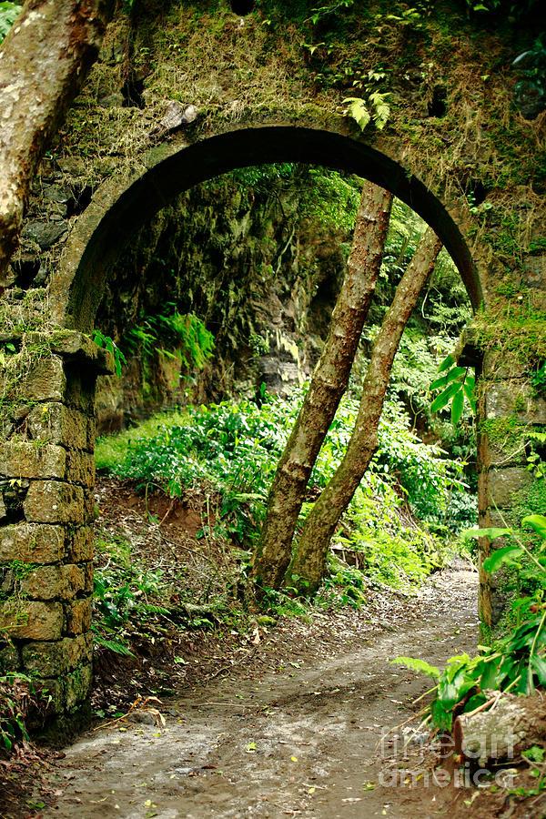 Architecture Photograph - Arch by Gaspar Avila