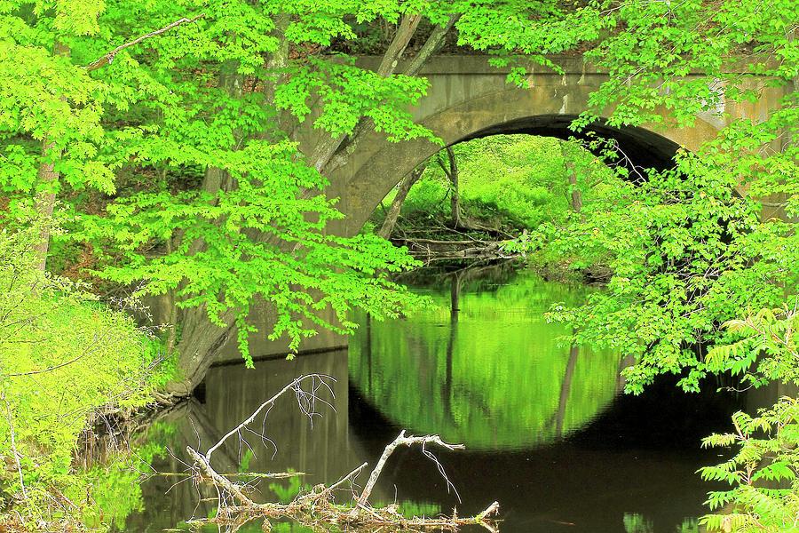 Bridge Photograph - Arched Bridge by Brian Pflanz