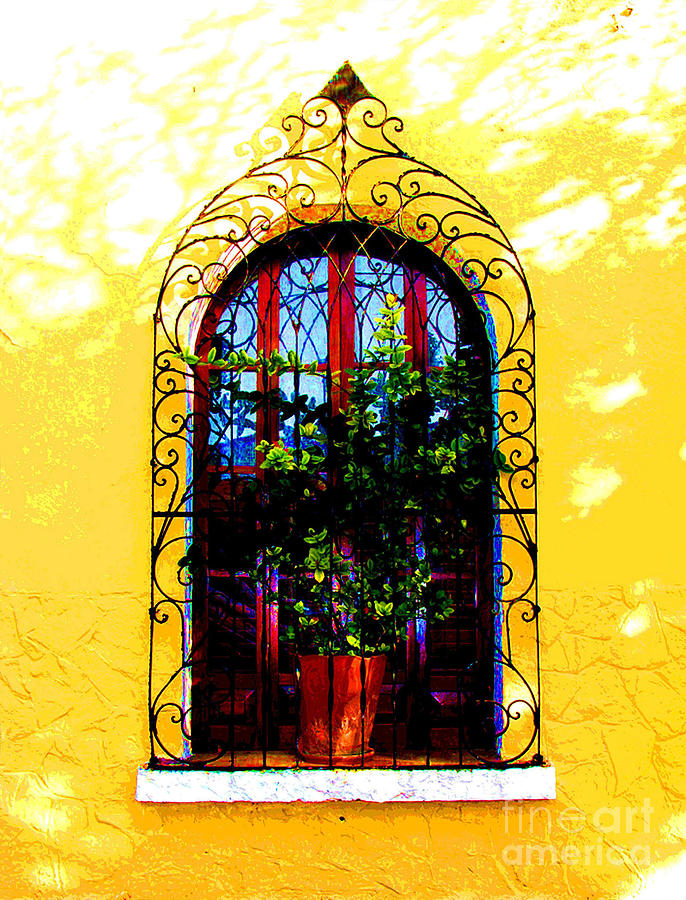 Darian Day Photograph - Arched Window By Darian Day by Mexicolors Art Photography