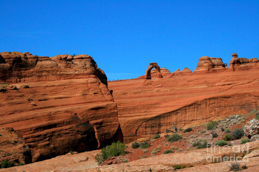 Arches National Park Painting - Arches National Park, Utah USA - Delicate Arch by Corey Ford