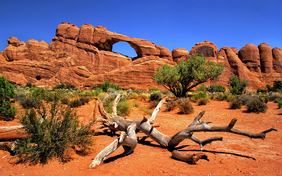 Arches Photograph - Arches National Park Windows Section View by Carolyn Derstine