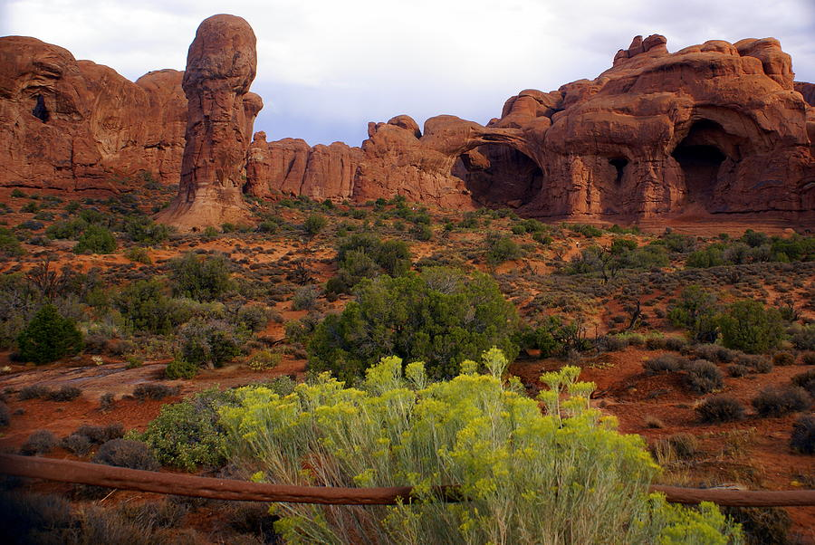 Arches National Park Photograph - Arches Park 1 by Marty Koch