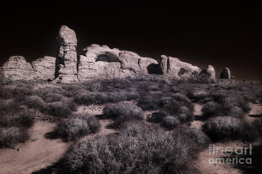 Arches within Arches by William Fields