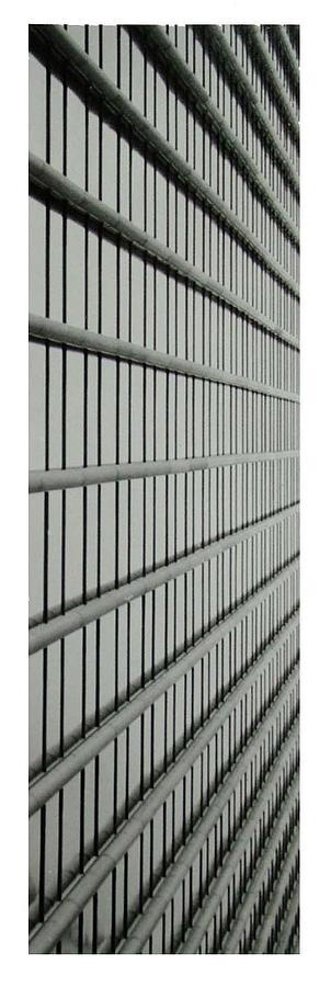 Architectural Abstraction 20 Photograph by Karl Bayek