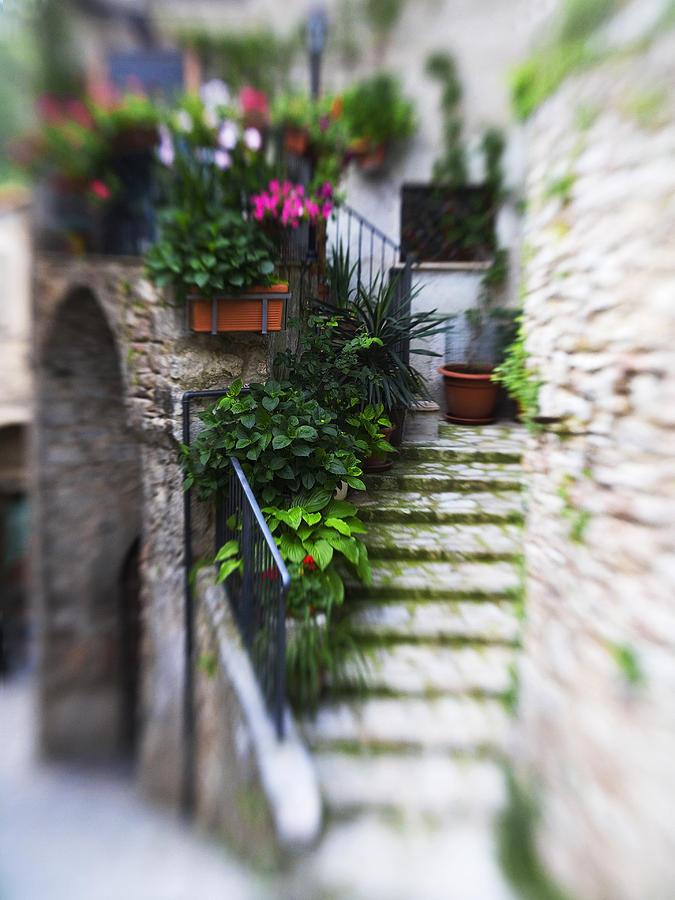 Italy Photograph - Archway And Stairs by Marilyn Hunt