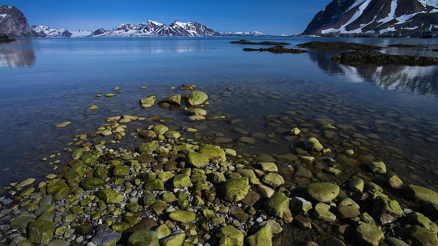 Arctic Photograph - Arctic Canvas by Biswarup Lahiri