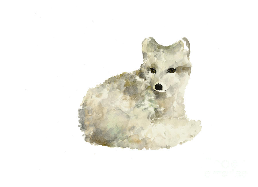 Arctic Fox Watercolor Art Print Painting Painting by ...