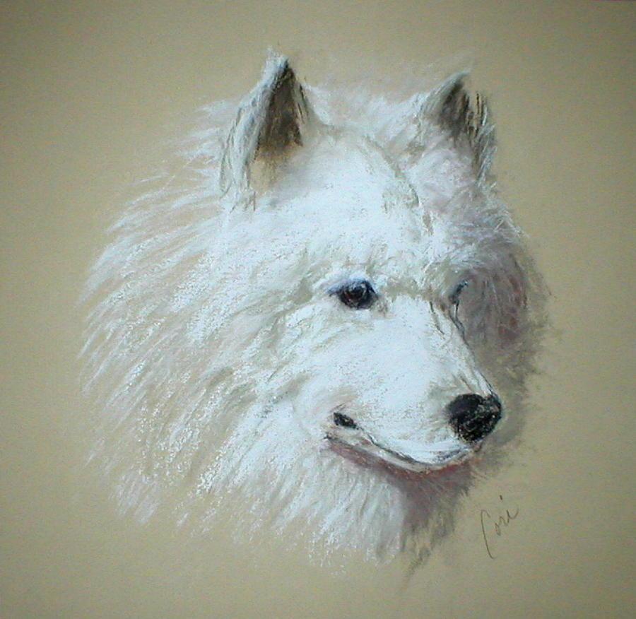 Dog Drawing - Arctic Serenity by Cori Solomon