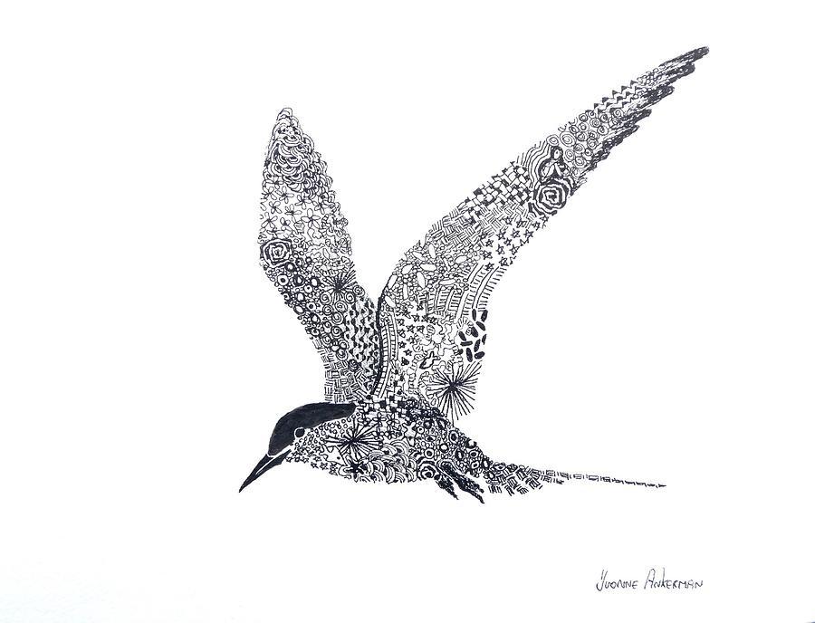 Bird Painting - Arctic Tern by Yvonne Ankerman