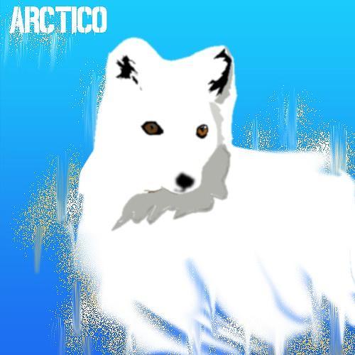 Arctiko