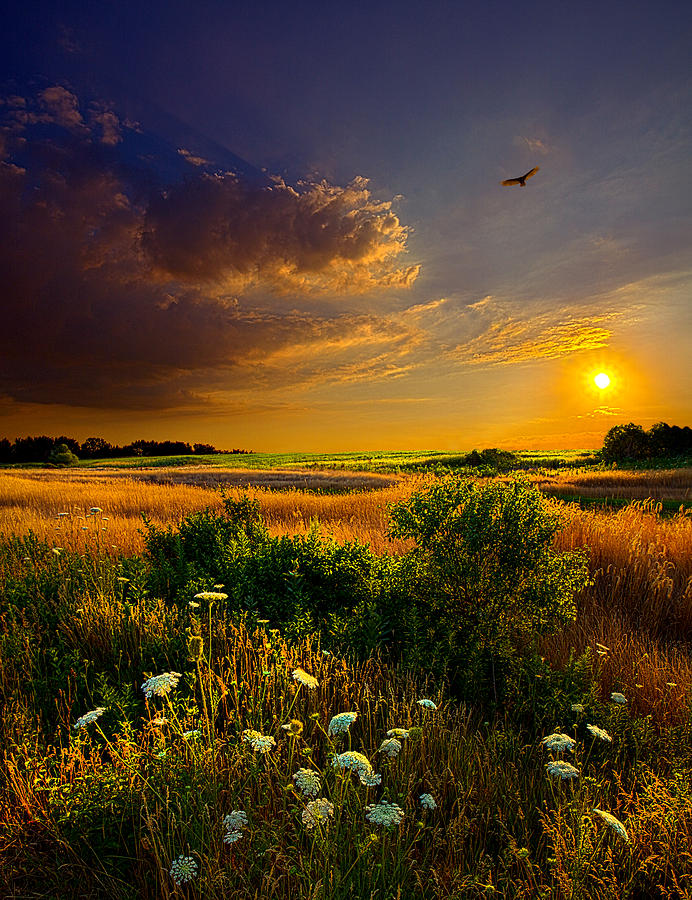 Horizons Photograph - Aridity by Phil Koch