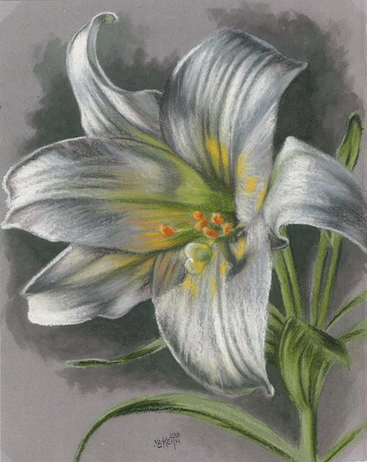 Easter Lily Mixed Media - Arise by Barbara Keith