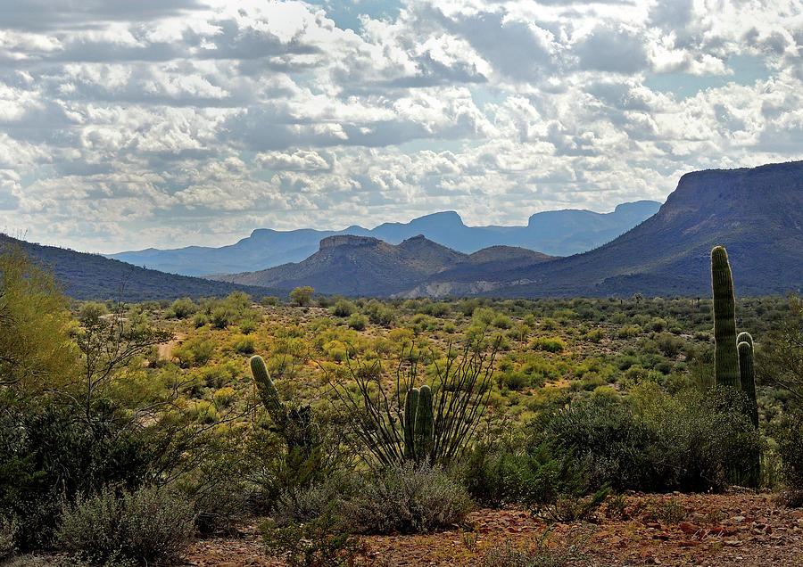 Southwestern Photograph - Arizona Calling by Gordon Beck